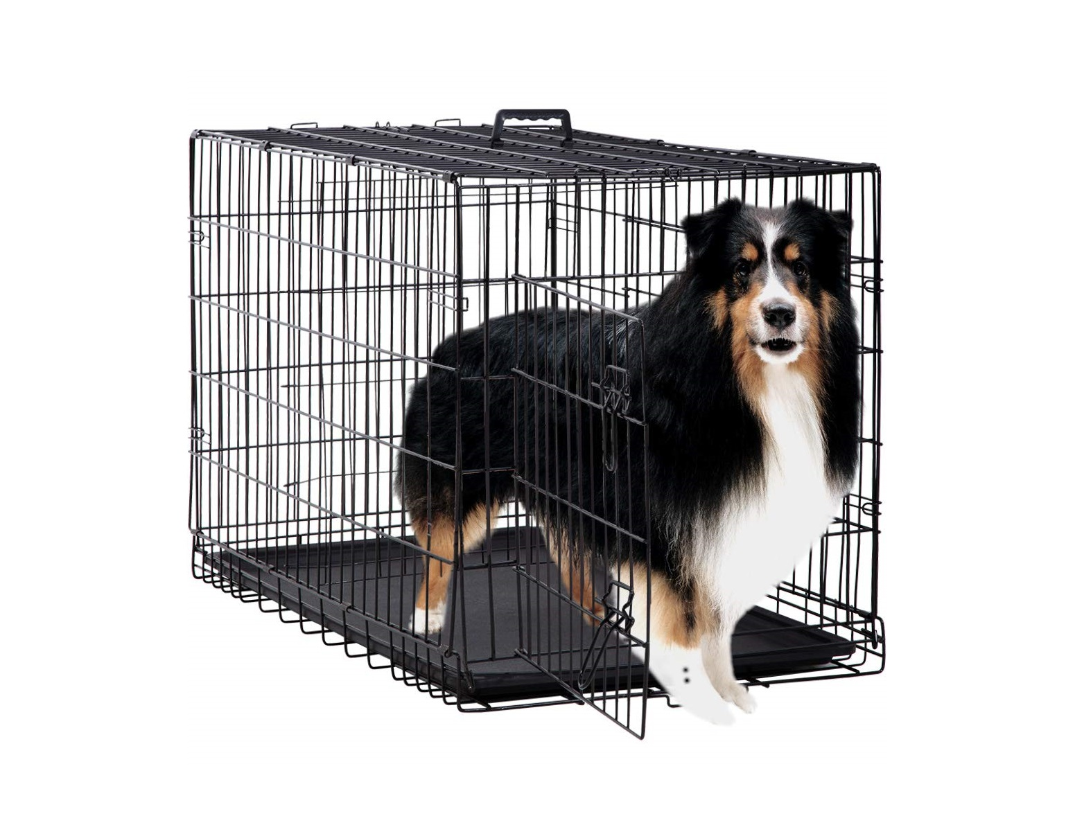 Top 5 Best Dog Crates in 2020 Reviews