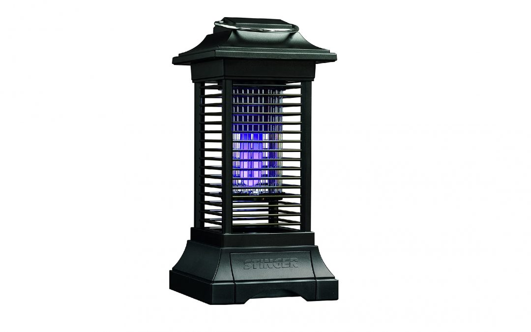 Top 5 Best Insect Killer For Outdoors in 2021  reviews